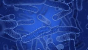 Bacteria in blue are moving vector illustration