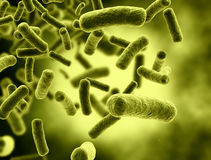 Bacteria cells. Large resolution 3d render Stock Images