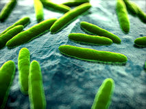 Bacteria close up. 3d rendered scientific illustration of some bacteria Royalty Free Stock Photography