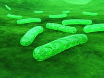 Bacteria close-up. microbes. royalty free illustration