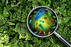 Bacteria And Germs On Vegetables. And the health risk of ingesting contaminated green food including romaine lettuce as a produce safety concept 3D render vector illustration