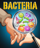 Bacteria on human hands Stock Photography