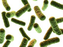 Bacteria illustration Royalty Free Stock Photos