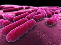 Bacteria illustration. 3d rendered illustration of some isolated bacteria Royalty Free Stock Image