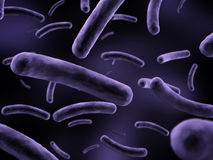 Bacteria illustration Stock Photos