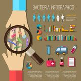 Bacteria Infographics Set Royalty Free Stock Images