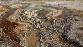 Bacteria pools in Yellowstone. National Park, Wyoming stock video footage