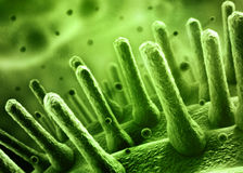 Bacteria SEM concept Stock Image