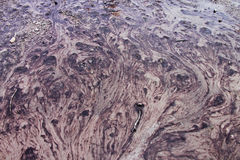 Bacteria Stream of The Yellowstone national park. The bacteria stream forms a painting naturally royalty free stock photography