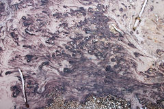 Bacteria Stream of The Yellowstone national park. The bacteria stream forms a painting naturally royalty free stock photos