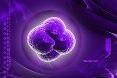 Bacteria, virus, cell 3d. Digital illustration Bacteria, virus, cell 3d in colour background stock illustration