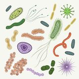 Bacteria, virus, germs icon set. For Medical Design.  on White Background Stock Images