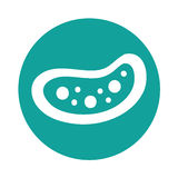 Bacterial cell structure icon Stock Photography
