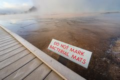 Bacterial Mats. At Grand Prismatic Spring, Yellowstone National Park Stock Photos