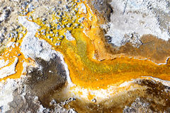 Bacterial mats from thermophilic organisms, Yellowstone National Park, Wyoming Stock Image
