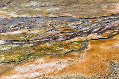 Bacterial mats from thermophilic organisms, Yellowstone National Park, Wyoming Stock Photos