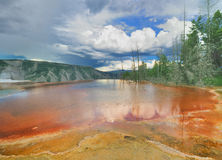 A bacterial pool from Mammoth Hot Springs Royalty Free Stock Photography