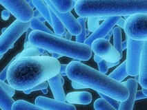 Bacterias Foto de archivo libre de regalías