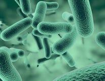 Bacterias 3D che rende l'illustrazione scientifica medica del fondo Fotografia Stock Libera da Diritti