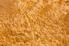 Bacterias de color naranja en Yellowstone Fotografía de archivo