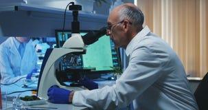 Bacterias de examen del cient?fico con el microscopio metrajes
