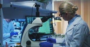 Bacterias de examen del cient?fico con el microscopio almacen de metraje de vídeo