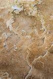 Bacterias en Mammoth Hot Springs Fotografía de archivo libre de regalías