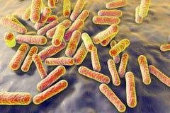 Bacterias que causan acné Libre Illustration