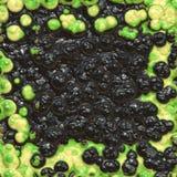 Bacterias verdes y negras Imagen de archivo libre de regalías