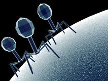 Bacteriophage Royalty Free Stock Photos