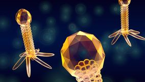 Bacteriophage close up. Group of bacteriophage close up Stock Images