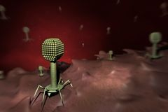 Bacteriophage viruses on a bacteria cell composing royalty free stock photos