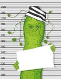 Bacterium Helicobacter pylori in the. Image of a criminal. cartoon bacterium vector illustration