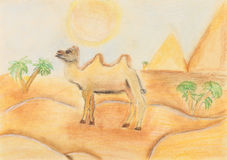 Bactrian camel in hot desert. Child's drawing - bactrian camel in hot desert under the scorching sun Royalty Free Stock Images