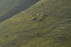 Bacy blisko Xinaliq, Azerbejdżan, daleka górska wioska w Wielkim Kaukaz pasmie Obraz Royalty Free