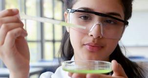 Baczny uczennicy doświadczalnictwo w laboratorium zbiory wideo