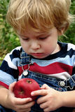 A bad apple. Toddler boy scowls at a bad spot in an apple Royalty Free Stock Images