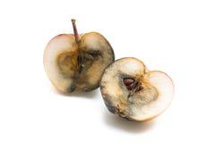 Bad apple halves Stock Image