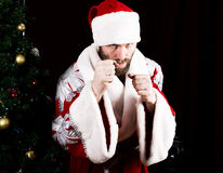 Bad brutal Santa Claus clenched his fists, ready to fight on the background of Christmas tree.  royalty free stock images