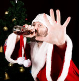 Bad brutal Santa Claus smiling spitefully, drinking brandy from a bottle and outstretched arm, on the background of. Christmas tree royalty free stock photo