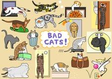 Bad cats set Royalty Free Stock Photography