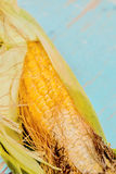 Bad corn Stock Image
