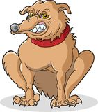 Bad Dog. This is a bad dog looking for a bone to pick Royalty Free Stock Image