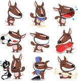 Bad Dog collection Royalty Free Stock Images
