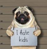 Bad dog hates kids stock images