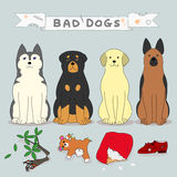 Bad dogs. With guilty evidences vector illustration