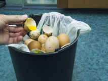 Bad Egg Going In Bin. Human hand throwing bad egg into a rubbish bin, filtered photo Stock Photos