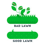 The bad and good green grass lawn concept. Royalty Free Stock Photo