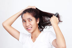 Bad Hair Day Stock Photography