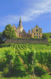 Bad-Hoenningen am Rhein,Rhine Valley,Germany Stock Image